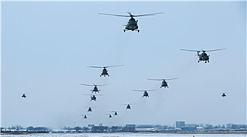 Multi-type helicopters in coordinated training