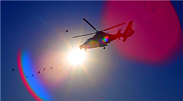Helicopters in round-the-clock flight training