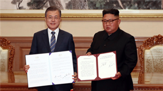 Denuclearization of the Korean Peninsula requires joint efforts from all parties
