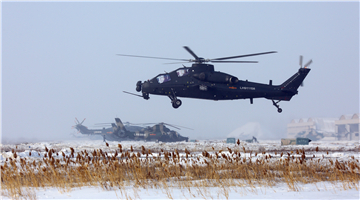 Multi-type attack helicopters lift off for flight training