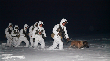 Border patrol at extremely cold night