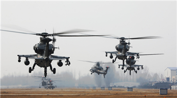 20-odd attack helicopters lift off for flight training