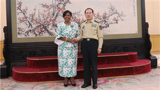 Chinese Defense Minister meets with Zimbabwean counterpart